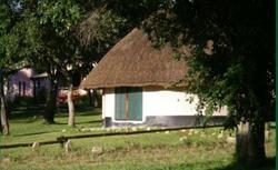 Casa Msika