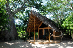 Pemba Dive and Bush Camp Mozambique