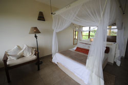 Luxury accommodation at Casa rex Vilanculos mozambique
